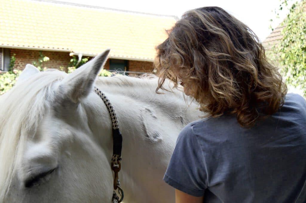 Eins mit Deinem Pferd - Pferdeliebe